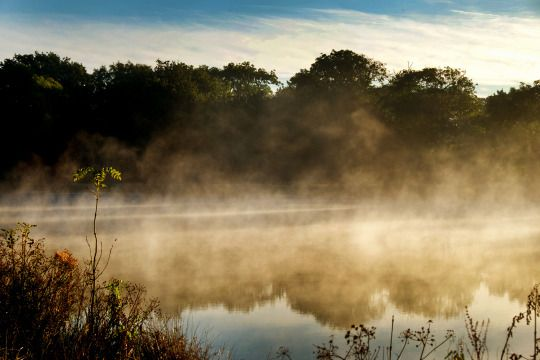 Day 428 of 'A Photograph Every Day For The Rest Of My Life' Tuesday 27th September 2016 'Misty Morning' It's I misty morning on the small lake near to my house in Barcombe. A range of Gill's images are available to purchase in special edition at www.gillcopeland.com