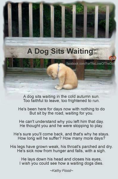 Heartbreaking...