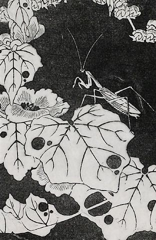 伊藤若冲『冬葵(ふゆあおい)』-拓版摺(額装もできます) - 神坂雪佳・葛飾北斎・伊藤若冲などの木版画販売 Winds!芸艸堂(うんそうどう)