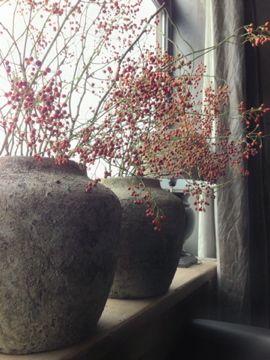 stoere potten met kleurige bessentakken voor het raam