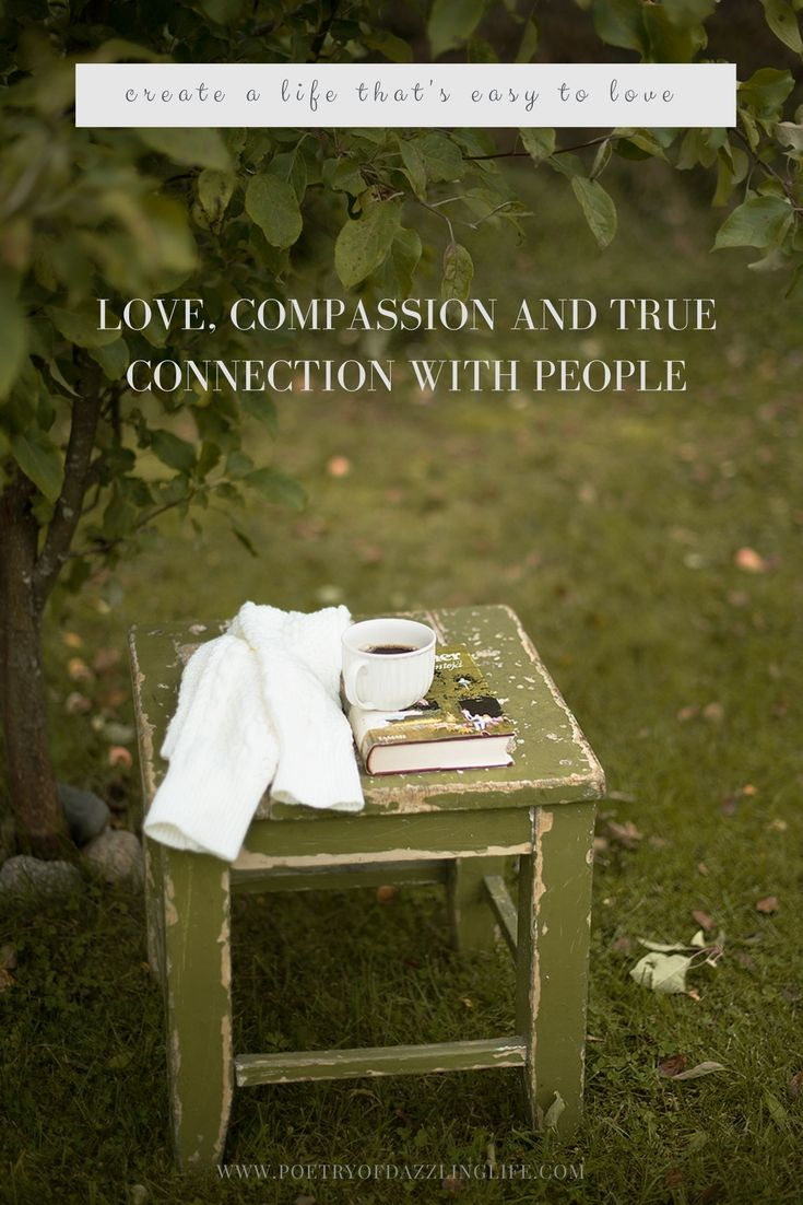 Love, Compassion And True Connection With People POETRY OF DAZZLING LIFE - BLOG