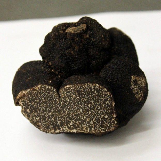 LA TRUFFE : c'est le « diamant noir charentais.  Chaque année, se tient le Marché aux Truffes Régional de Jarnac (http://www.truffes-poitou-charentes.com). Ici, vous trouverez différentes façons de l'accommoder.