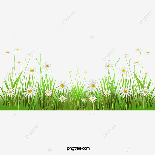 Gambar Bunga Rumput Clipart Rumput Belukar Bunga Bunga Png Transparan Clipart Dan File Psd Untuk Unduh Gratis Grass Flower Green Grass Background Pink Flowers Background