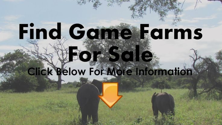Game Farms For Sale Groblersdal