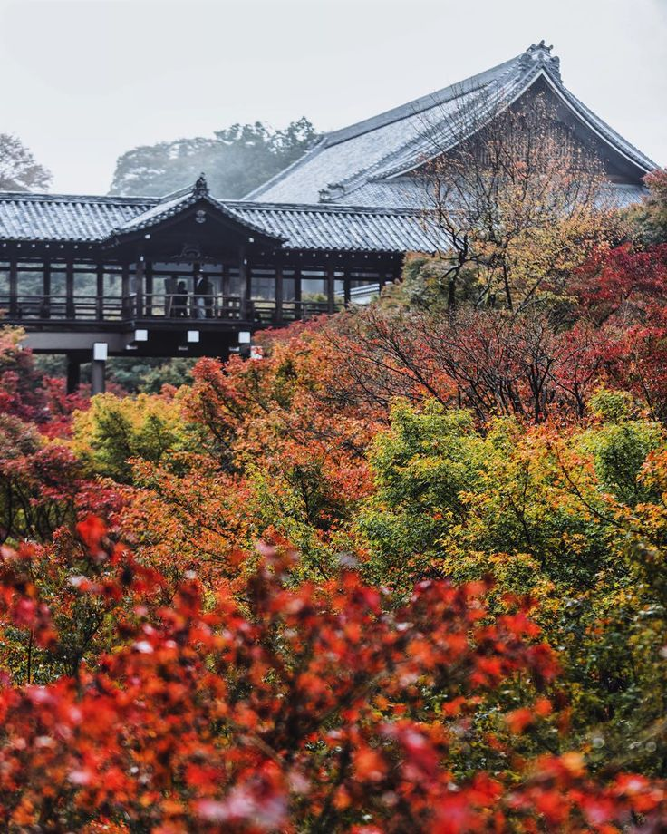 : 赤黄緑に彩られた通天橋 . Location : #Tofukuji #東福寺 Photo by @yah_s 2015.11.18 . by kyoto_iitoko