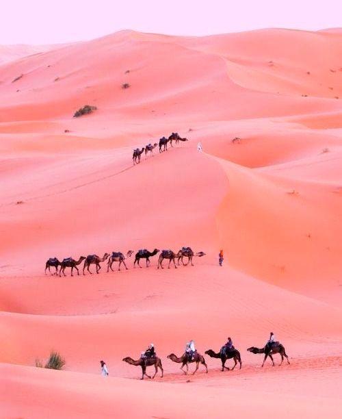 Best 25 Pink Sand Ideas On Pinterest