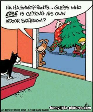 Funny Dog Christmas Tree Indoor Bathroom Cartoon   Funny Joke Pictures
