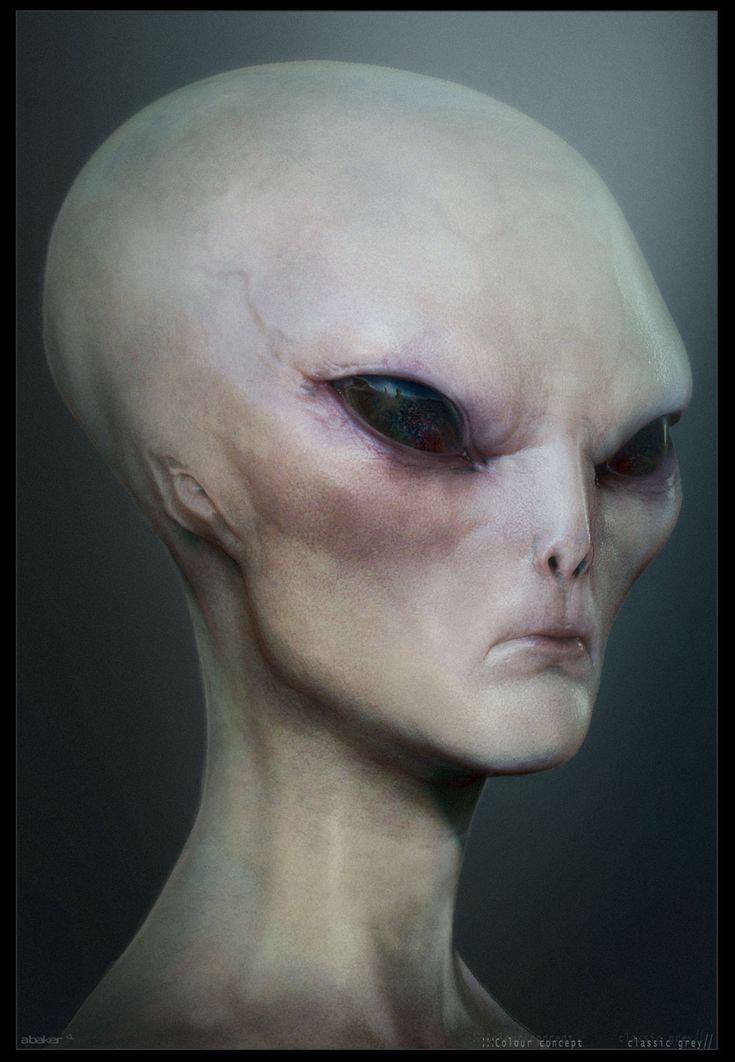 Grey Alien skin study