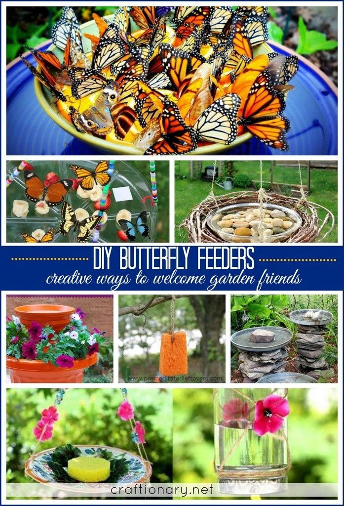 DIY butterfly feeders.. Great to have in your backyard for Spring and fun to make with kids