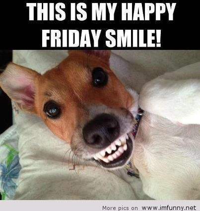 Hilarious Happy Friday Pictures