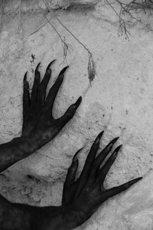black and white, claws, and creepy afbeelding