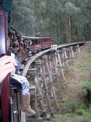 Crossing the bridge along the Puffing Billy railway Melbourne line: Day 2 of our Host Family Excursions saw us all up high in the Dandenong Ranges.  Here we boarded the Puffing Billy Locomotive at Emerald Lake railway station