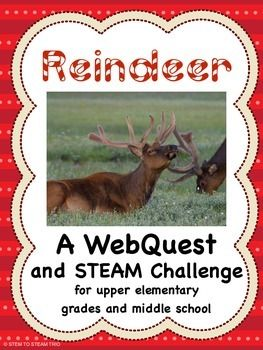 This engaging WebQuest and STEAM challenge will help to foster collaboration among your students.  They will work with partners and then in teams to find out about reindeer as you act as the facilitator.  They will use the information they get from the WebQuest to make a one-dimensional life-sized reindeer!