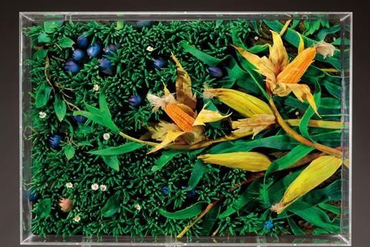 PIERO GILARDI (né en 1942) Granoturco e prugne cadute, 2006 Composition en mousse polyuréthane da