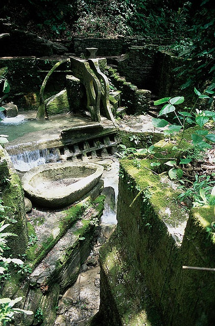 1000 images about edward james las pozas xilitla on for Jardin xilitla