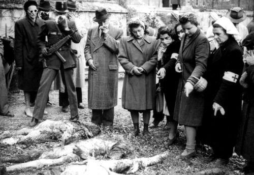 венгерские гражданские лица, партизаны и медсестры пытаются идентифицировать плохо разлагающиеся трупы венгерских евреев, которые были выведены из Дуная после гибели от национал-социалистических членов партии Стрелка Креста (венгерский: Nyilaskeresztes PART).  Во время короткого правления Стрелка Кросса с 15 октября 1944 по 28 марта 1945 года, от десяти до пятнадцати тысяч мирных жителей (многие из которых были евреи) были убиты наповал, а 80000 человек были депортированы из ...