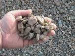 Dump Ohio DumpOhio.com Top Soil Mulch Gravel Delivery Columbus Ohio