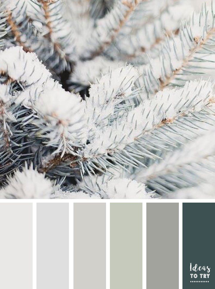 Color Palette Inspired By Winter Color Palette Blue Color Schemes Winter Color Palette