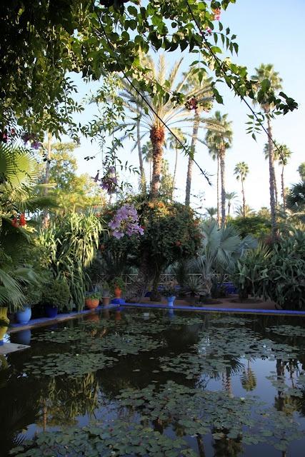 Jardin Majorelle, Marrakech, Morocco, photograph by Heather Clawson