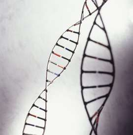 Our Parkinson's Place: 'Red hair' gene variant may underlie association b...