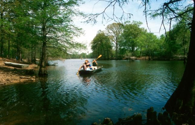 39 best louisiana state parks and historic sites images on for Kid friendly fishing near me