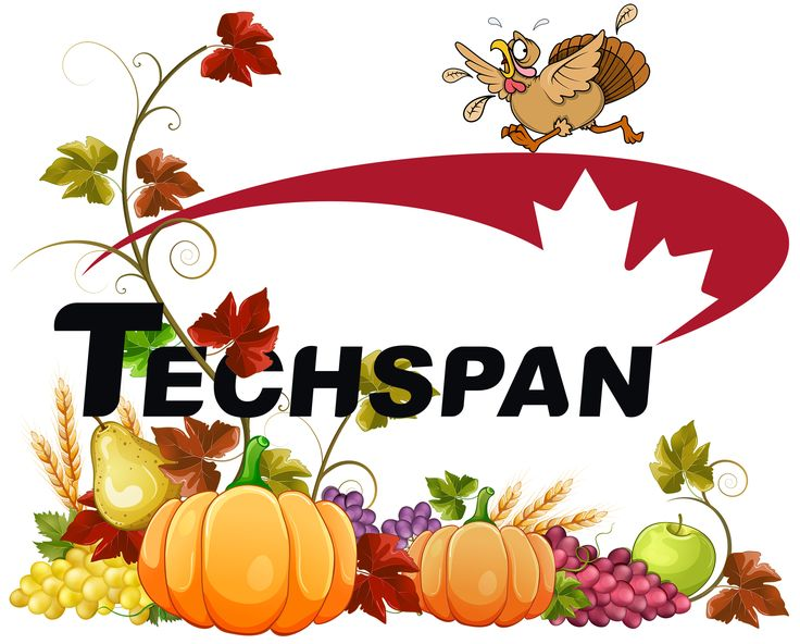Techspan would like to wish you a very happy Thanksgiving!