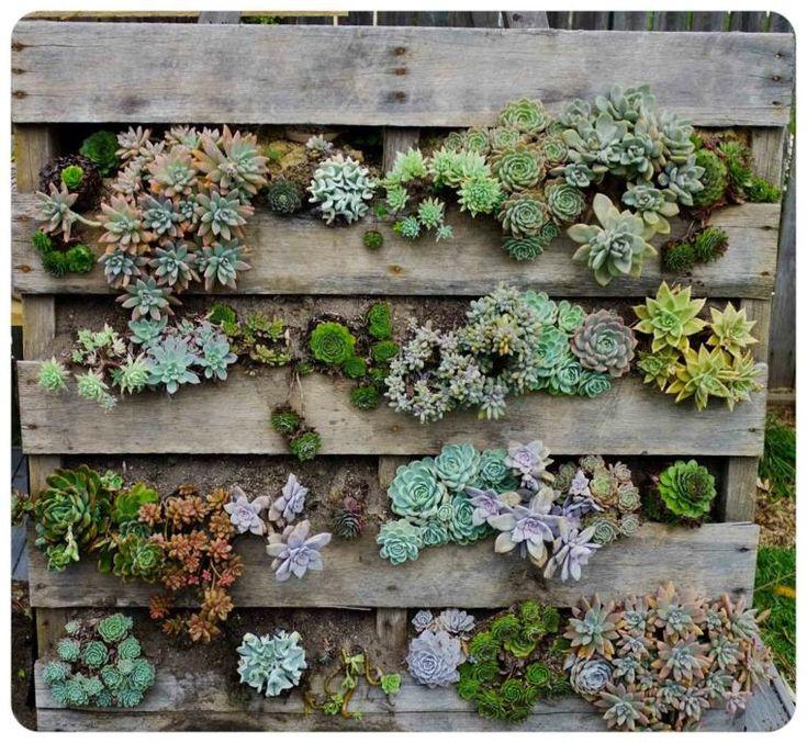 Vertikaler Garten mit Paletten, unglaubliche Designs einfach zu erstellen