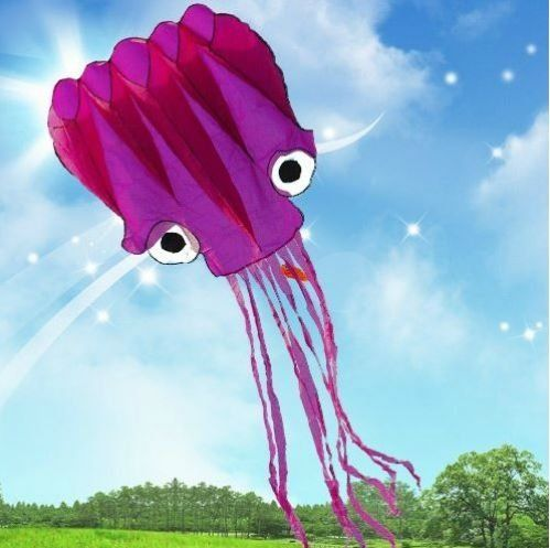 5M Large Octopus Parafoil Kite with Handle & String Outdoor Park Garden Games Fun Amazona's presentz http://www.amazon.co.uk/dp/B00HLFR8FC/ref=cm_sw_r_pi_dp_2EpVub02G6DGT
