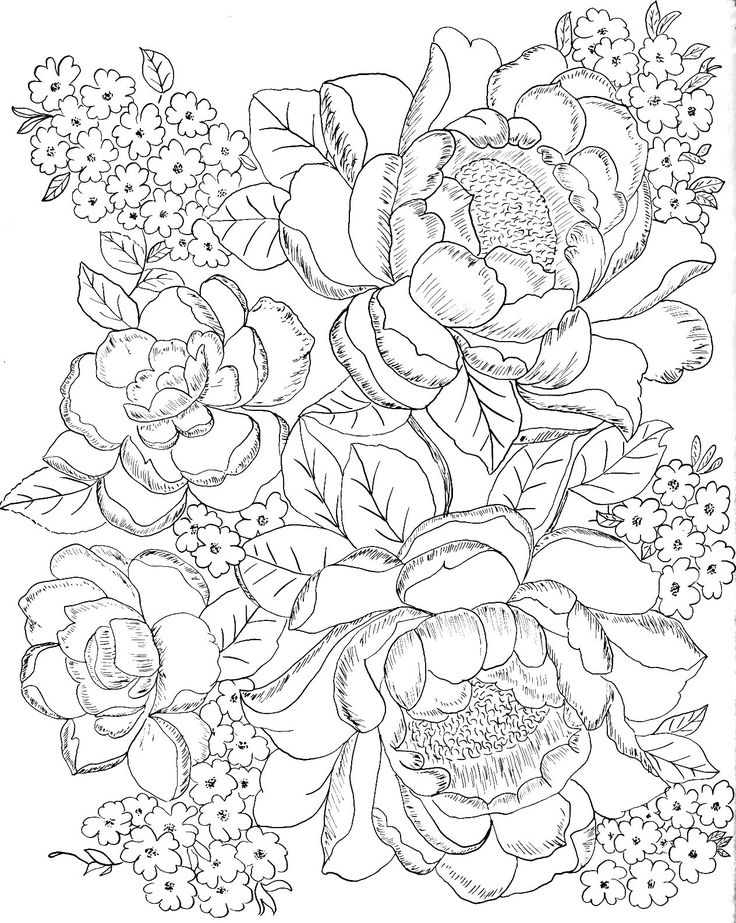 462 best Coloring Pages Landscapes Flowers Mushrooms Plants