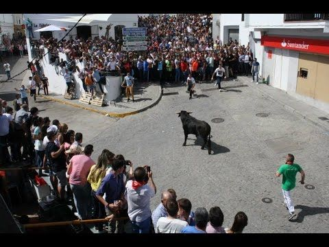 Suelta de Reses Fiesta Independencia Benalup-Casas Viejas 2015. HD.