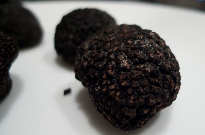 Italian Scientists Have Discovered that Truffles Contain 'Bliss Molecule' Similar to THC