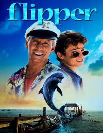 Fourteen-year-old Sandy (Elijah Wood) is less than excited to find out he'll be spending an entire summer on an island off the coast of Florida with his Uncle Porter (Paul Hogan), a local fisherman. Sure his summer will be a total bust, Sandy quickly changes his mind after he meets a friendly dolphin named Flipper, as well as a pretty neighbor named Kim (Jessica Wesson). Based on the popular television series of the same name.