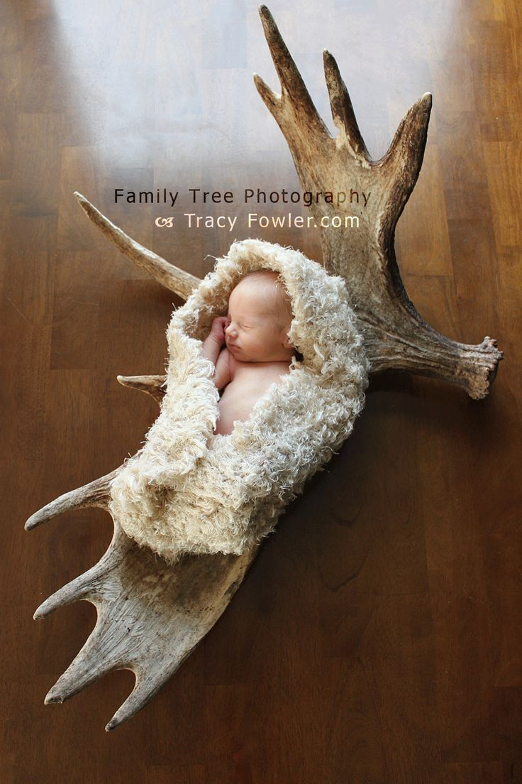 Family Tree Photography | Newborn Photography | Antlers | Hunting  | www.tracyfowler.com