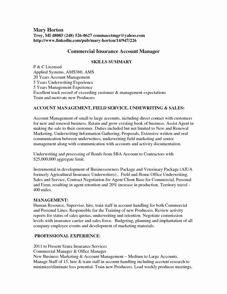 30 Account Manager Resume Sample in 2020 Commercial