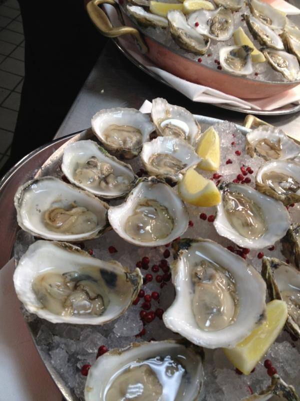 Rhode Island's Salt Pond Oysters