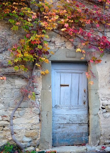 Coloured vines and old wooden doors. Old Door by chez loulou, via Flickr