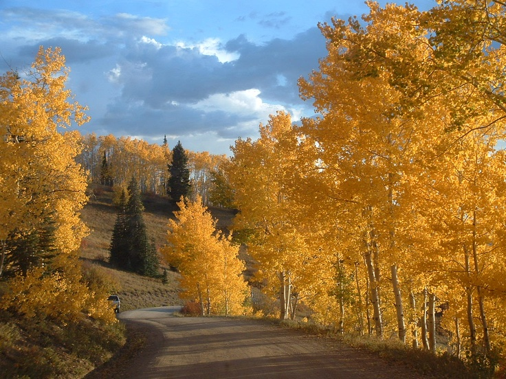 17 Best Images About Steamboat Springs On Pinterest Best