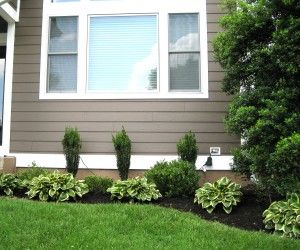 Boxwood Hedge Front Yard Curb Appeal