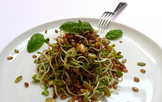 Ricetta biologica: insalata di orzo con germogli di daikon