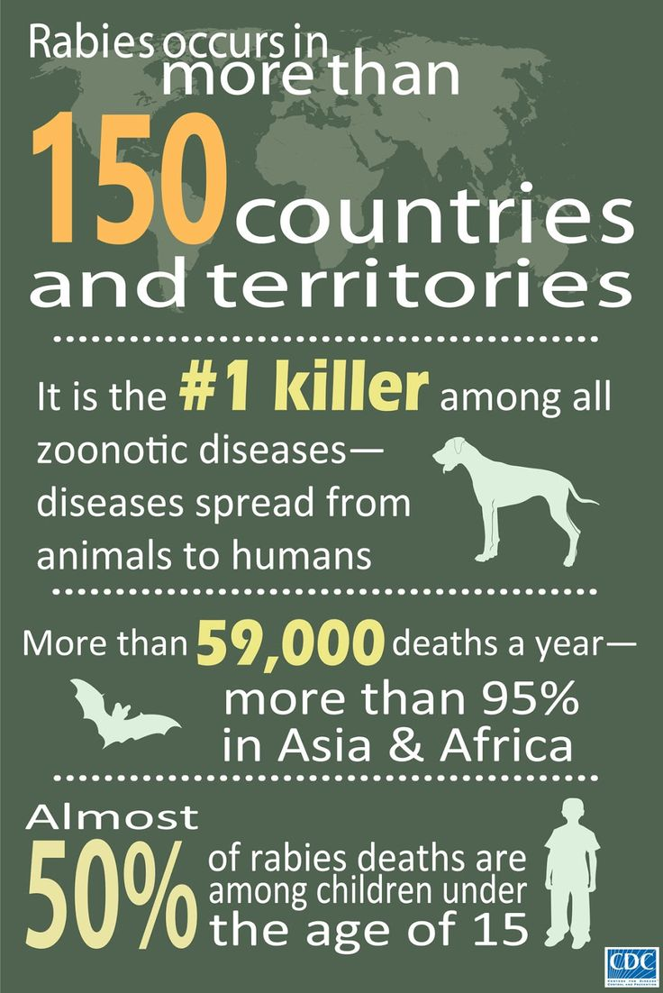 Rabies occurs in more than 150 countries and territories, CDC