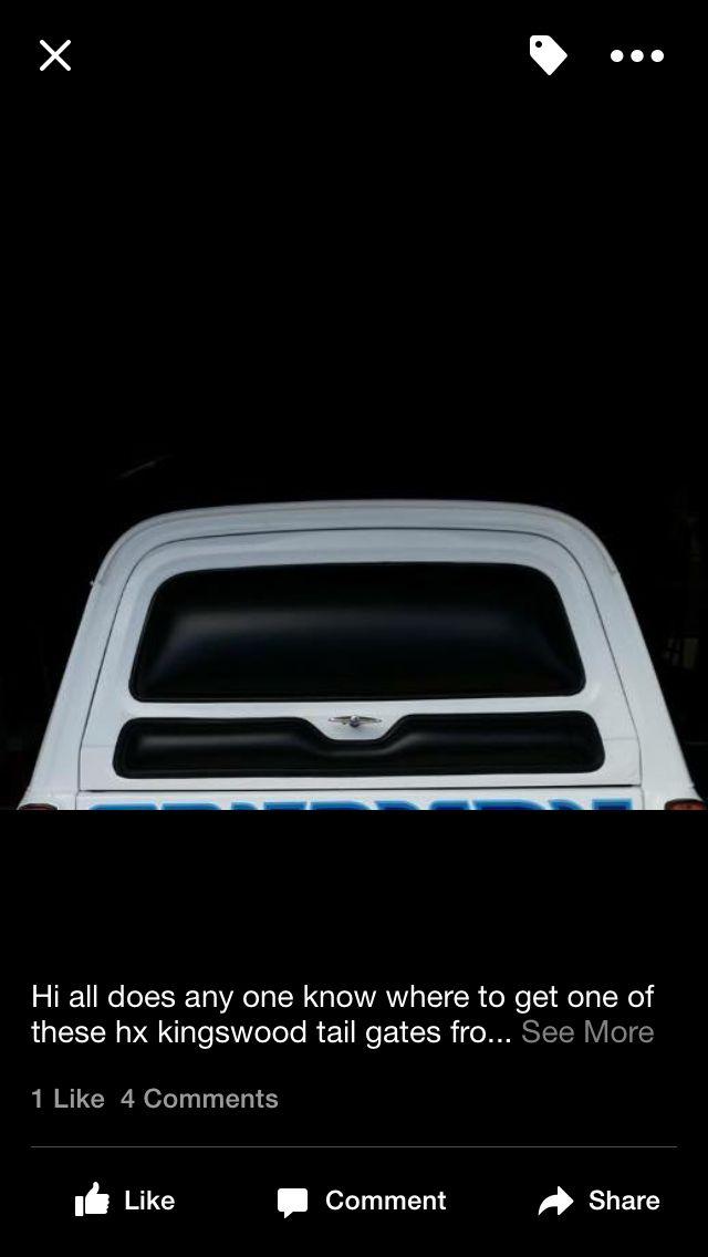 Panel van tailgate