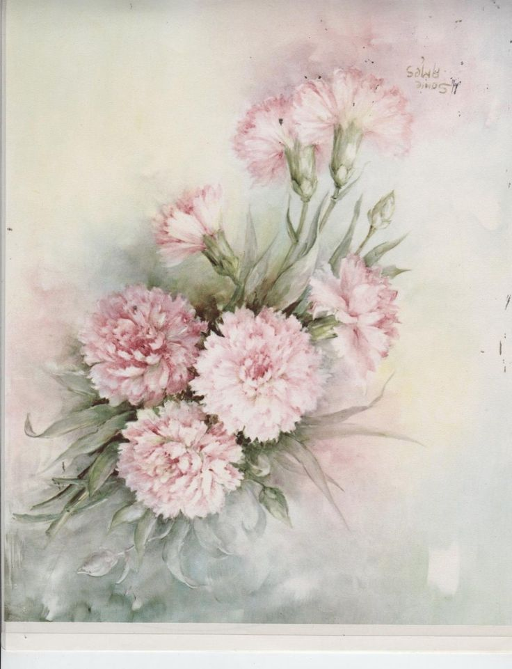 Carnations 66 by Sonie Ames China Painting Study 1974 | eBay