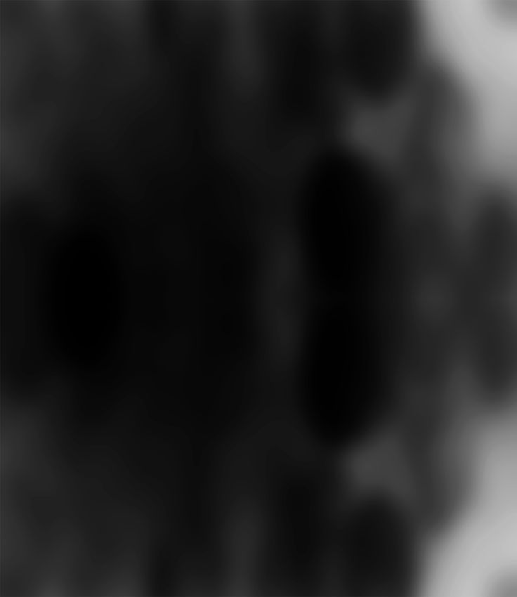 Tausende von Tieren werden Tag für Tag auf unterschiedlichen Kleinanzeigen-Plattformen zum Verkauf angeboten. Ob Welpe, Katzenbaby, Papagei oder Schlange - mit nur einem Klick können sie wie Gegenstände gekauft werden.  VIER PFOTEN möchte den unseriösen Haustierhandel beenden und für Sicherheit auf den Kleinanzeigen-Plattformen sorgen. Nicht nur die Menschen sollen so sicher wie möglich nach einem Haustier suchen können, sondern auch Tiere, die zum Verkauf angeboten werden, müssen geschützt…