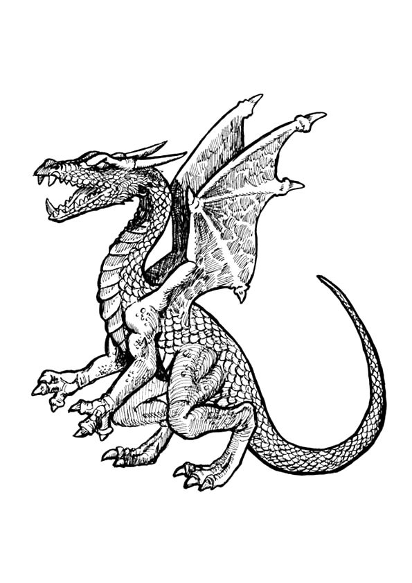 17 best images about coloriages de dragons on pinterest - Coloriages de dragons ...