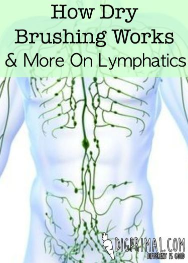 How Dry Brushing Works & More On Lymphatics