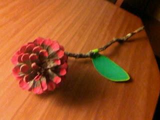 Rosa feta amb una pinya.