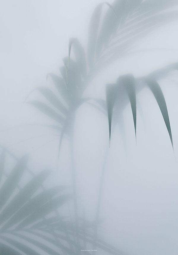 Botanic postcard | Kristina Dam Studio
