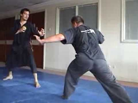 Silat Harimau in Indonesia and Austria - YouTube