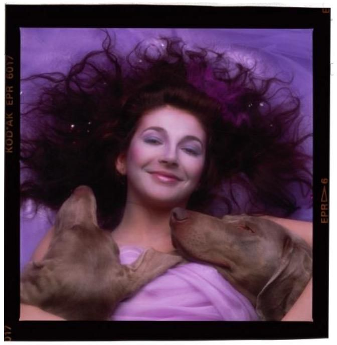 Kate Bush - Hounds Of Love are Smiling #katebush Yirry Yanya ‏@YirryYanya Alternative cover