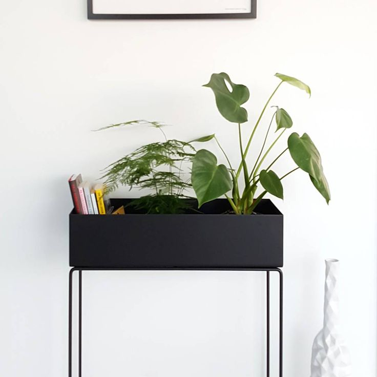 17 best ideas about plant box on pinterest industrial live plants homemade house furniture. Black Bedroom Furniture Sets. Home Design Ideas